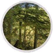 Firs And Ferns Round Beach Towel