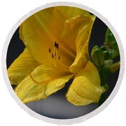 First Bloom - Lily Round Beach Towel