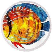 Fish 502-11-13 Marucii Round Beach Towel