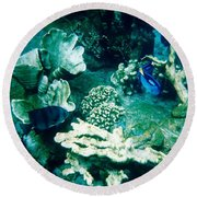 Fish In The Coral Round Beach Towel