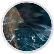Fish Of The St. Lawrence Round Beach Towel