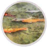 Fish - School Of Koi Round Beach Towel by Susan Savad