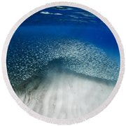 Fish Wave. Round Beach Towel by Sean Davey