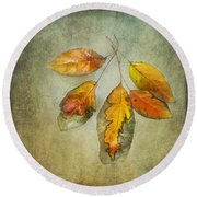 Five Autumn Leaves Round Beach Towel