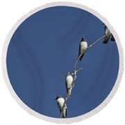 Five Of A Kind Round Beach Towel
