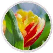 Flame Leaf Tulip Round Beach Towel