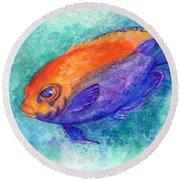 Flameback Angelfish Round Beach Towel