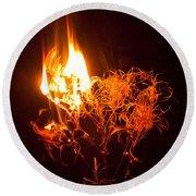 Flaming Seedheads Round Beach Towel