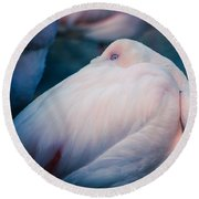Flamingo 1b - Square Round Beach Towel