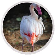 Flamingo In Fuchsia Round Beach Towel
