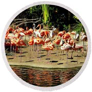 Flamingo Family Reunion Round Beach Towel