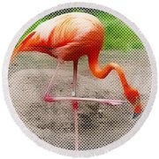 Flamingo Four Round Beach Towel