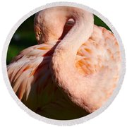 Flamingo Twist Round Beach Towel