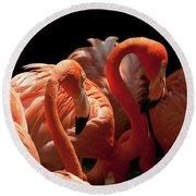 Flamingoes Round Beach Towel