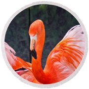 Flamingos Round Beach Towel