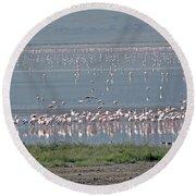 Flamingos On Lake Magadi Round Beach Towel