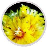Fleurs De Cactus 2 Round Beach Towel