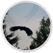 Flight Of The Black Crow Round Beach Towel
