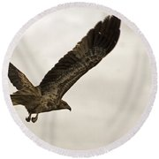 Flight Of The Brown Kite V7 Round Beach Towel