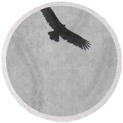 Flight Of The Buzzard Round Beach Towel