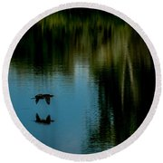 Flight Of The Cormorant Round Beach Towel