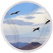 Flight Of The Sandhill Cranes Round Beach Towel by Mike  Dawson