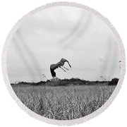 Flight Over The River Of Grass Round Beach Towel