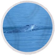 Floating Along  Round Beach Towel