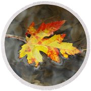 Floating Autumn Leaf Round Beach Towel