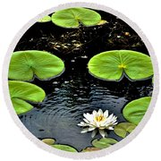 Floating Lily Round Beach Towel