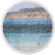Flocking At Terranea Round Beach Towel