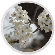 Flowering Tree Round Beach Towel