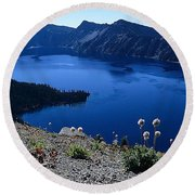 Flora Of Crater Lake Round Beach Towel
