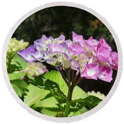 Floral Art Photography Pink Lavender Hydrangeas Round Beach Towel