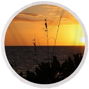 Florida Delight Round Beach Towel