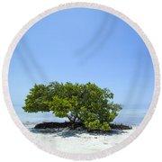 Florida Keys Lonely Tree Round Beach Towel