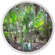Florida Palmetto Bush Round Beach Towel
