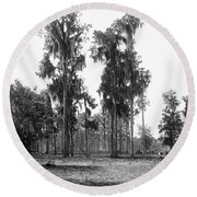 Florida Spanish Moss Round Beach Towel