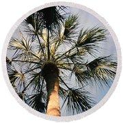 Florida Trees Round Beach Towel