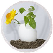 Flower And Egg Round Beach Towel