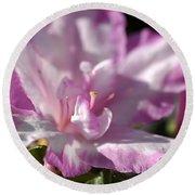 Flower--azalea-white-pink Round Beach Towel