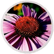 Flower Bed Close Up Round Beach Towel