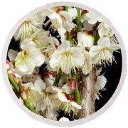 Flower Bunch Bush White Cream Strands Sensual Exotic Valentine's Day Gifts Round Beach Towel