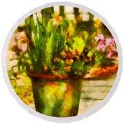 Flower - Daffodil - A Pot Of Daffodil's Round Beach Towel