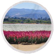 Flower Fields Of Lompoc Valley Round Beach Towel
