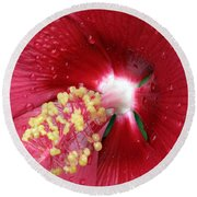 Flower Garden 16 Round Beach Towel