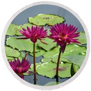 Flower Garden 57 Round Beach Towel