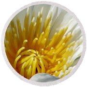 Flower Garden 69 Round Beach Towel