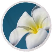 Flower In The Sky Round Beach Towel