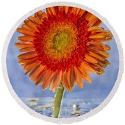 Flower In Water Round Beach Towel